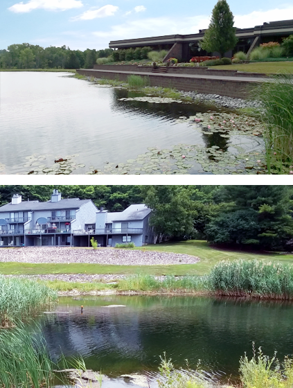 lake pond management maintenance NY PA NJ Rochester Syracuse