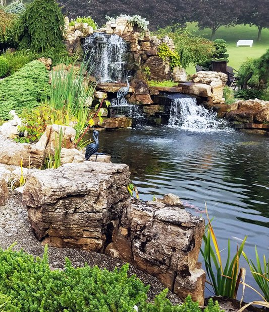 Water Gardens And Features: Pond Maintenance, Cleaning & Repair Services