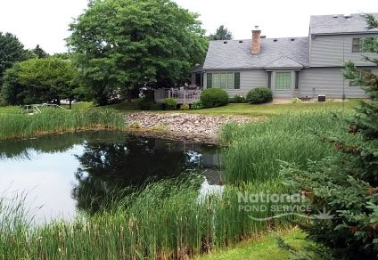 Residential Homeowner pond water feature maintenance management Rochester Syracuse NY