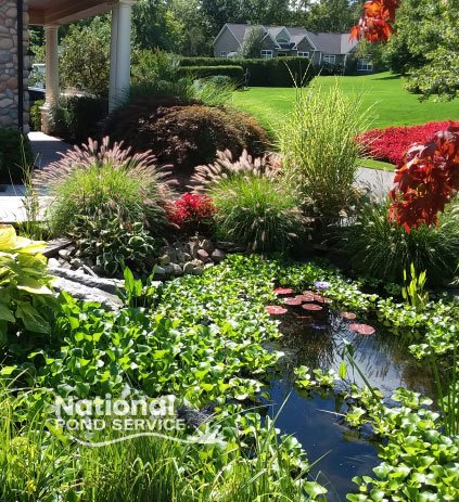 Water Feature Water Garden Design Installation Rochester Syracuse Skaneateles NY