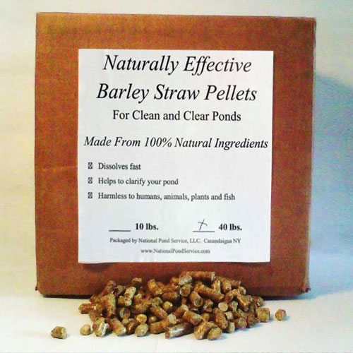 Barley Straw Pellets clean clear ponds
