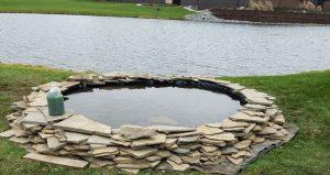 Biological pond filtration system