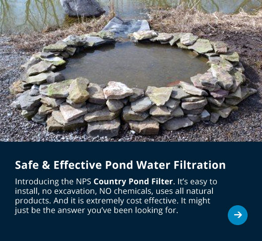 all natural safe effective country pond water filter system