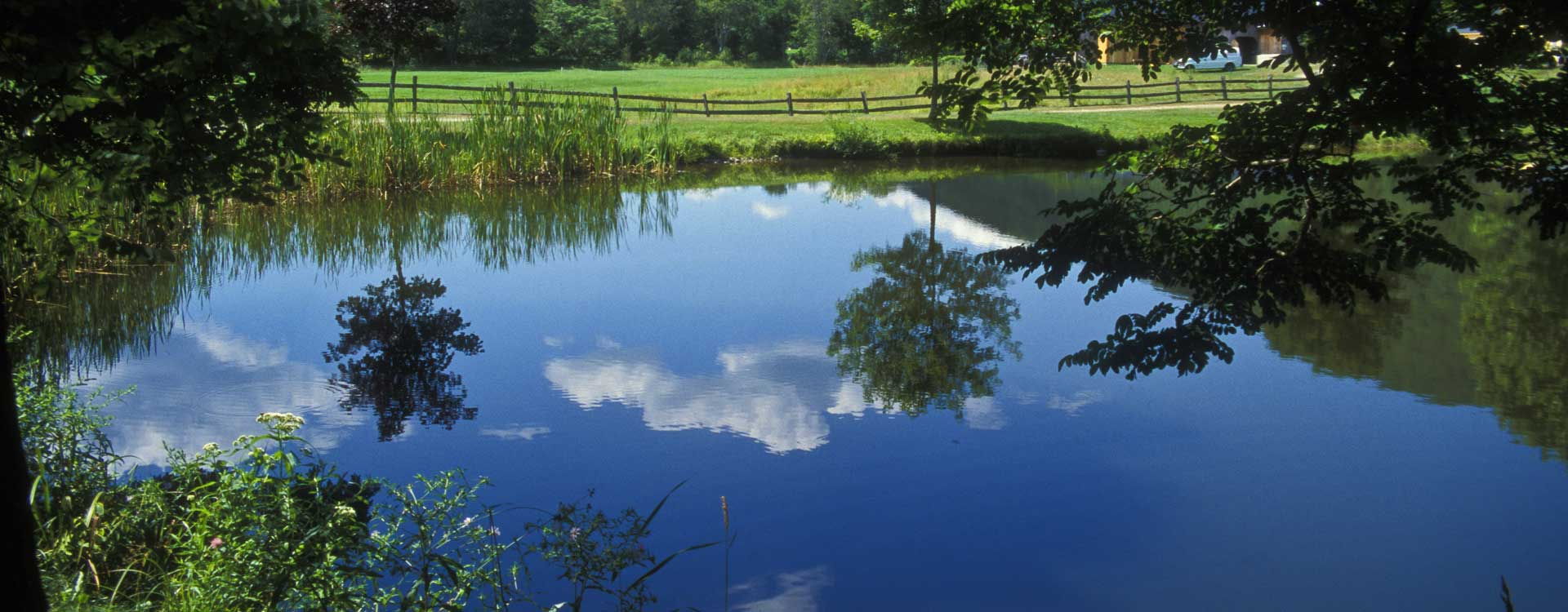 pond cleaning products supplies