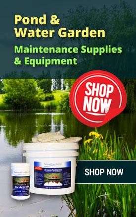 pond water garden maintenance cleaning clarifier supplies equipment