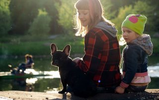 dogs pond water harmful algae bloom poisoning