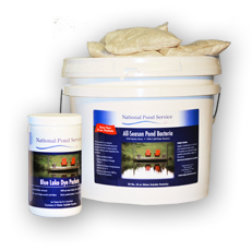 cyanobacteria pond water treatment products